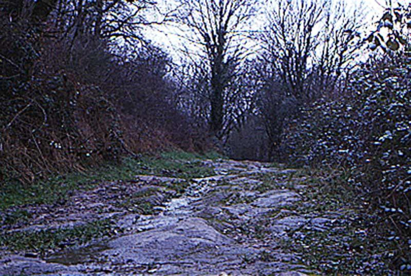 Via Lemivocensis